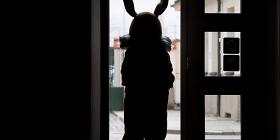 Зверское нападение напасхального кролика иеще 4 самых нелепых истории отюристов