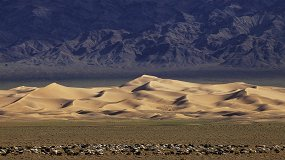 Храмы, пустыня и лапки ежиков: путешествие по Монголии, которое вам захочется повторить