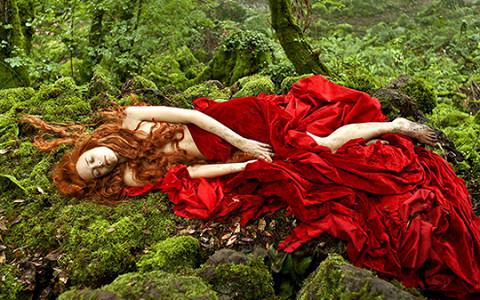 «Страшные сказки»: королевы, чудища и кровь в самом красивом фильме осени