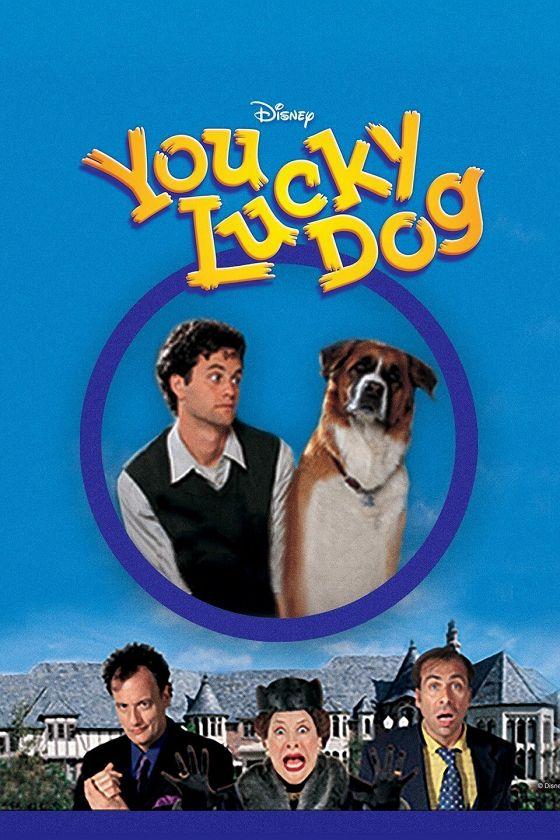 Везучий пес (You Lucky Dog)