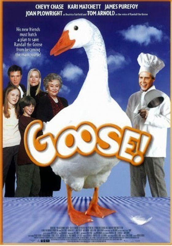 Приключения волшебного гуся (Goose on the Loose)
