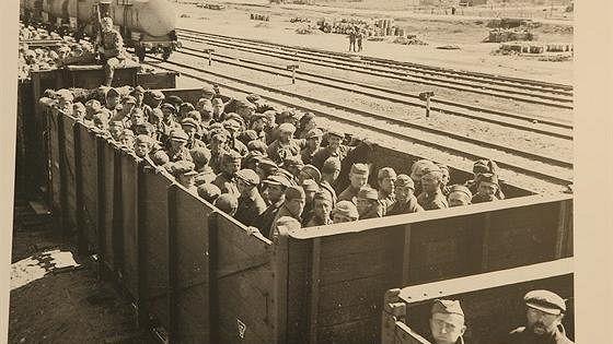 Плен и возвращение. Советские военнопленные в Германии 1941–1945 годов