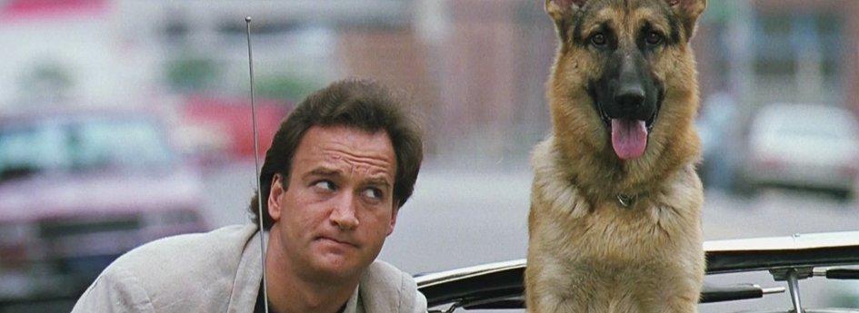 Кино: «К-9: Собачья работа»