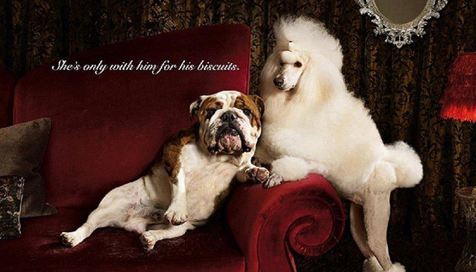 Кино: «Ночь пожирателей рекламы-2010»