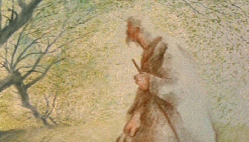 Кино: «Человек, который сажал деревья»