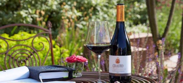 fitcher: Сборная Португалии: как вина из страны портвейна завоевывают мир
