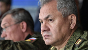 Шойгу провел переговоры сминистром обороны Армении