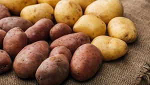 Врач объяснила, чемможет быть опасен картофель