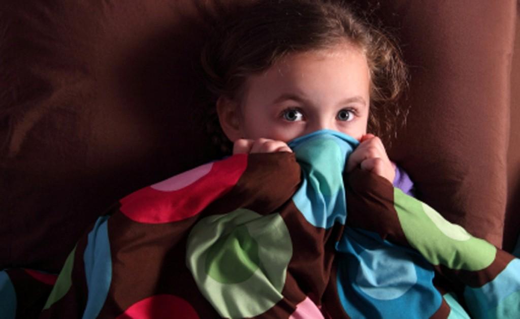 Дипломная работа: Детские страхи и способы их коррекции