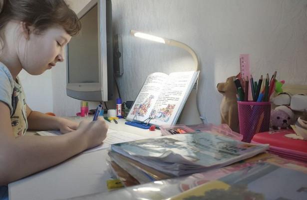 ВПриангарье зачетыре дняв1,5раза выросло число школьных классов наудаленном обучении