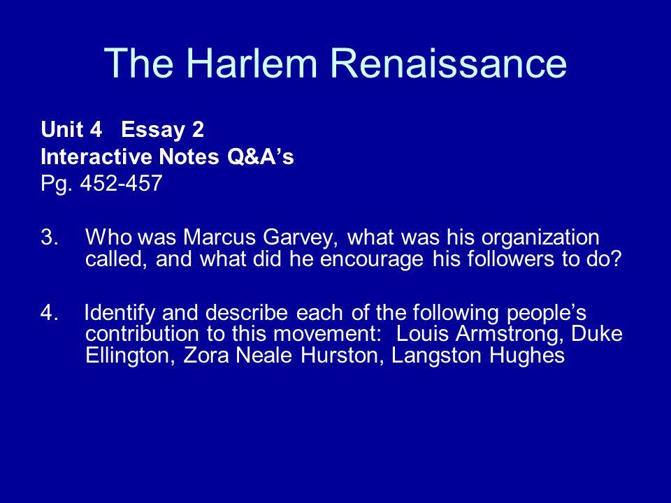 Essays on renaissance literature