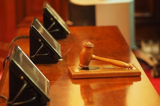 Комитет Госдумы отклонил проект, разрешающий судам восстанавливать вправах усыновителей