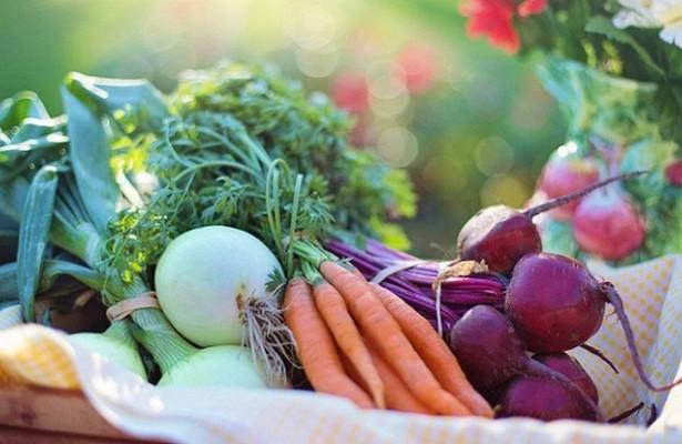 Сельхозпродукцию можно будет продавать насвоей земле