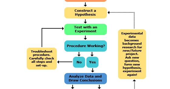 Hypothesis construction