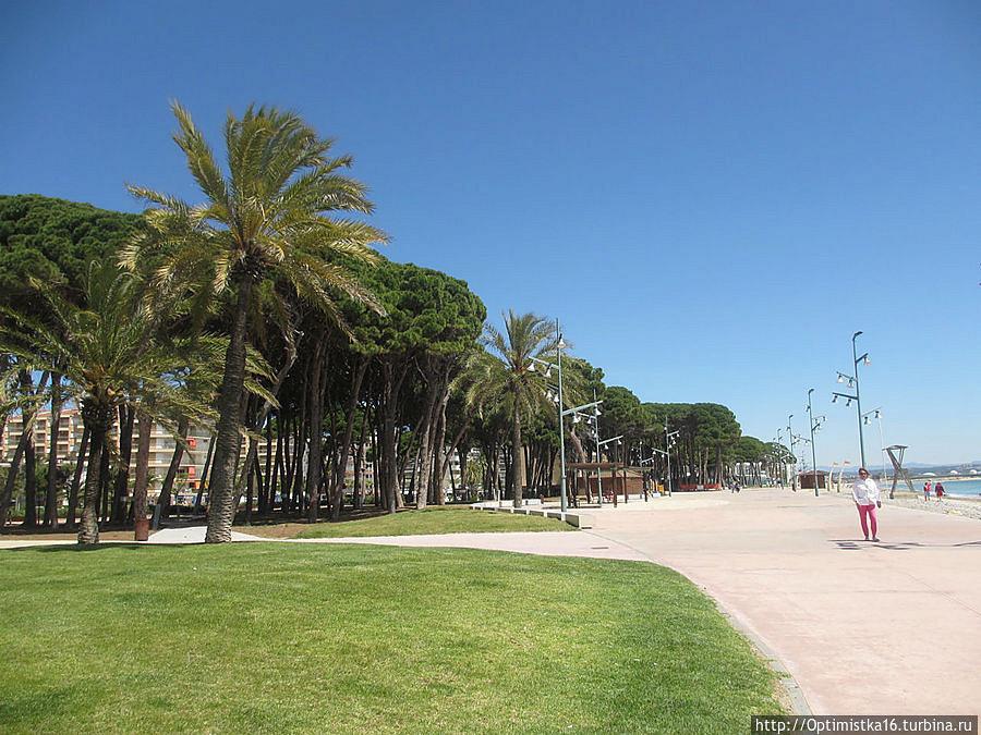 Недвижимость испании ла пинеда
