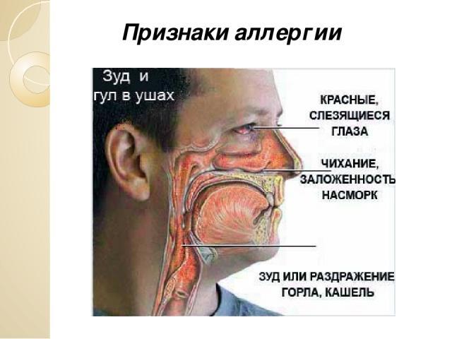 Может ли болеть ухо от горла у ребенка