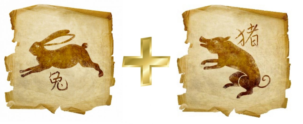 Кабан и телец гороскоп женщи
