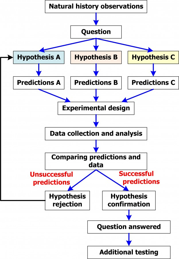 Hypothesis Testing - Relationships