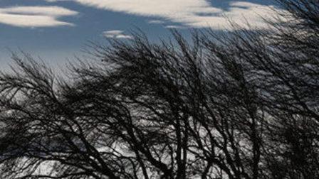 ВКрасноярске сохранится сильный ветер