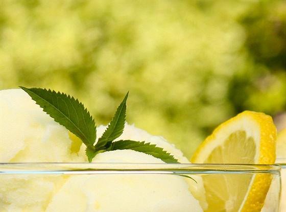 Лимонный шербет