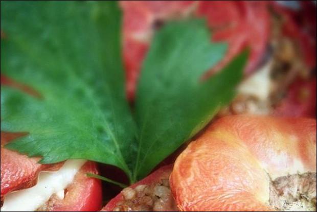 Фаршированные помидоры с гречкой