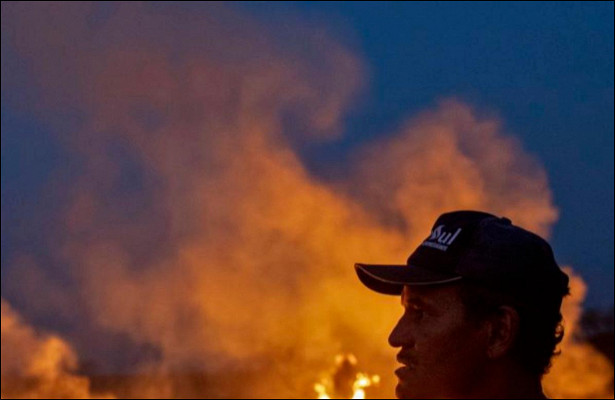 Борьба согнем спомощью торговли иликакЕвропа может помочь спасти Амазонку