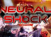 «The Neural Shock»