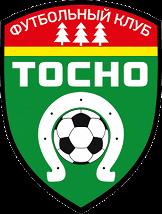 ФК Тосно — ФК Динамо